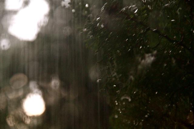 Raindrops at Night
