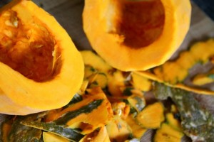 Kabocha Remains