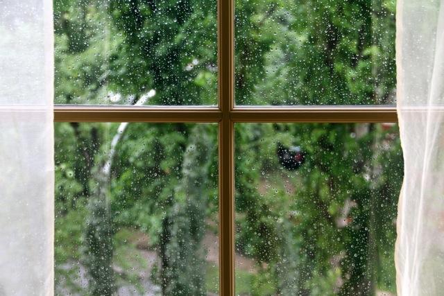 Rainy September Day