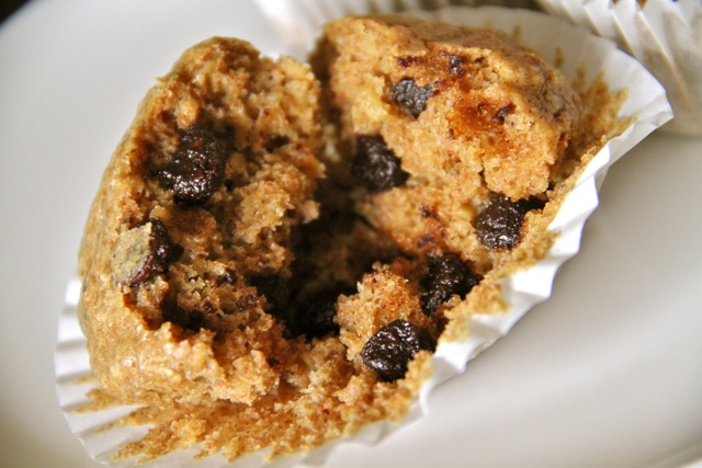 Chocolate Chip Oatmeal Muffin