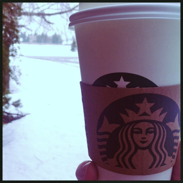 Snowy Day Bux