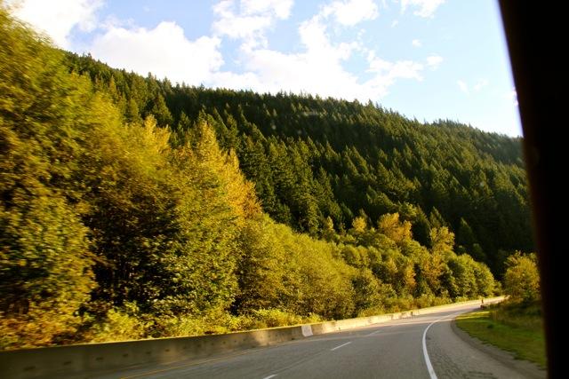 Fall Road2
