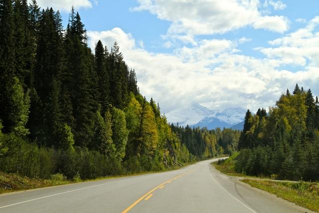 Fall Road5