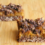 Healthy Pumpkin Pie Oat Bars