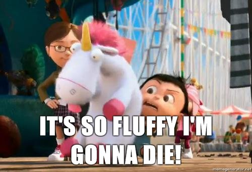 Its So Fluffy