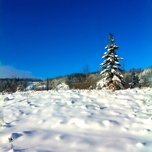 Country Snows