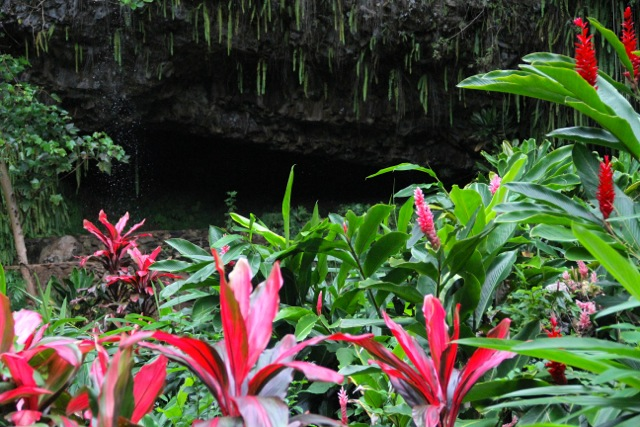 Fern Grotto2