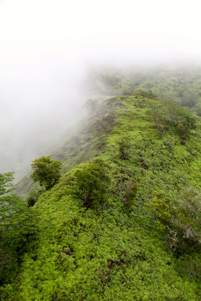 Flying Over Kauai21