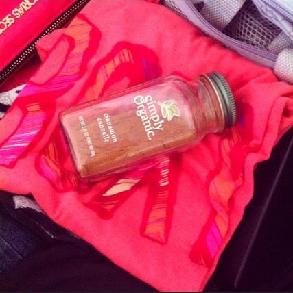Travelling Cinnamon Shaker