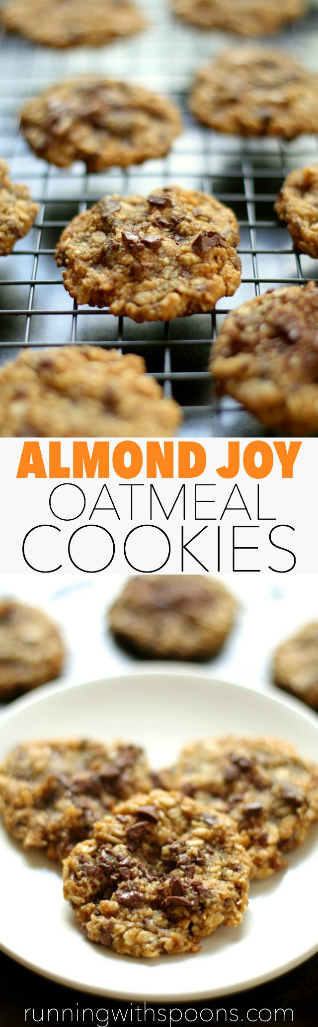 Almond Joy Oatmeal Cookies -- almond flour, coconut, and chocolate in a soft and chewy gluten-free oatmeal cookie || runningwithspoons.com #glutenfree #healthy #cookies