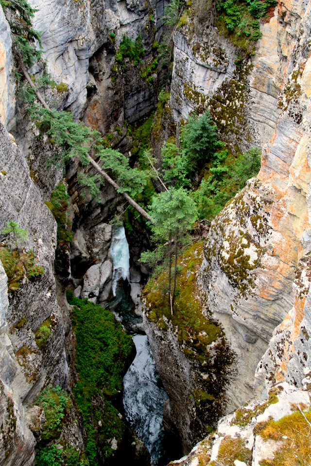Maligne Canyon3