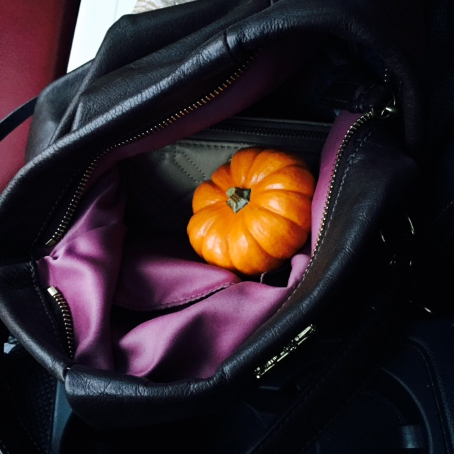 Purse Pumpkins
