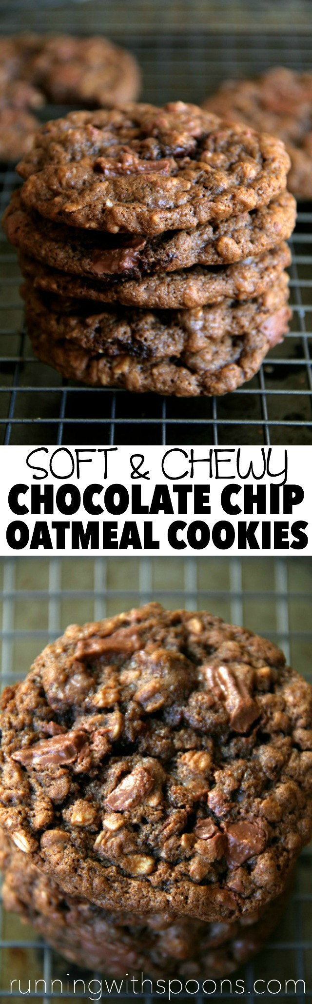 Double Chocolate Chip Oatmeal Cookies -- soft, chewy, and LOADED with chocolate flavour. The perfect treat for any chocolate lover! || runningwithspoons.com #chocolate #oatmeal #cookies