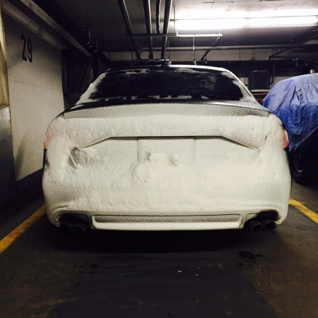 Snowy Car Butt