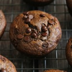 Flourless Chocolate Chip Gingerbread Muffins