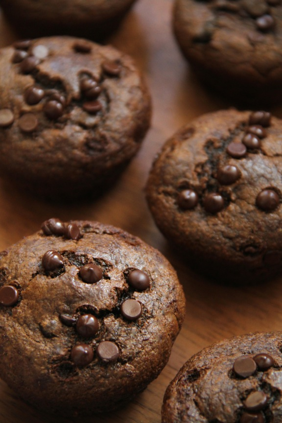 Flourless Chocolate Chip Gingerbread Muffins -- made without flour, butter, oil, or refined sugar, but so soft and tender that you'd never be able to tell! || runningwithspoons.com #glutenfree #gingerbread #muffins