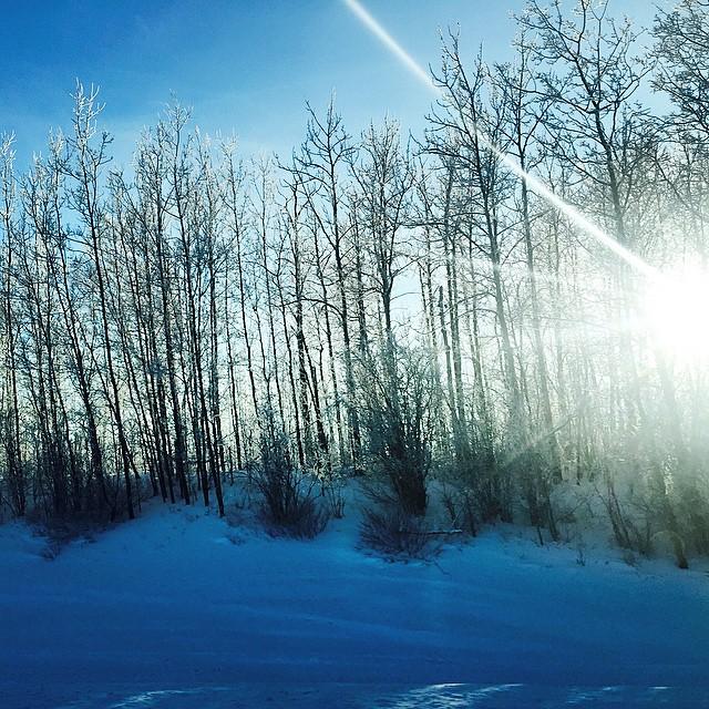 Winter is Pretty