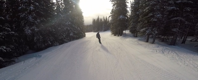 Peaceful Mountain Trail