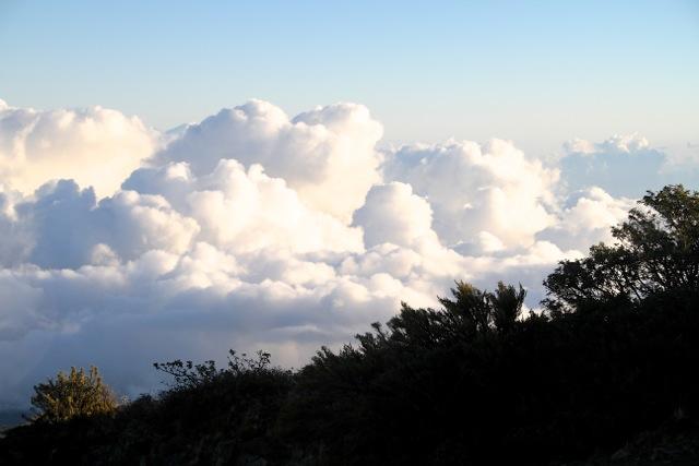 Fluffy Maui Clouds