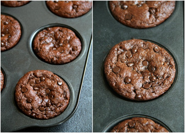 Muffin Teaser