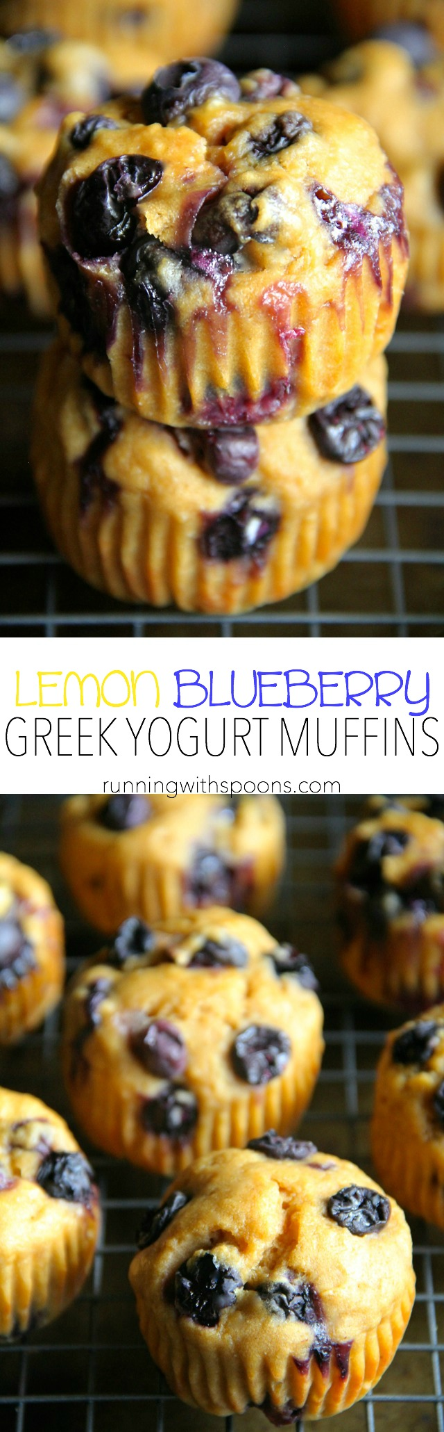 Lemon Blueberry Greek Yogurt Muffins -- soft and tender muffins made with Greek yogurt and loaded with blueberries. These healthy muffins make a PERFECT breakfast or snack! || runningwithspoons.com
