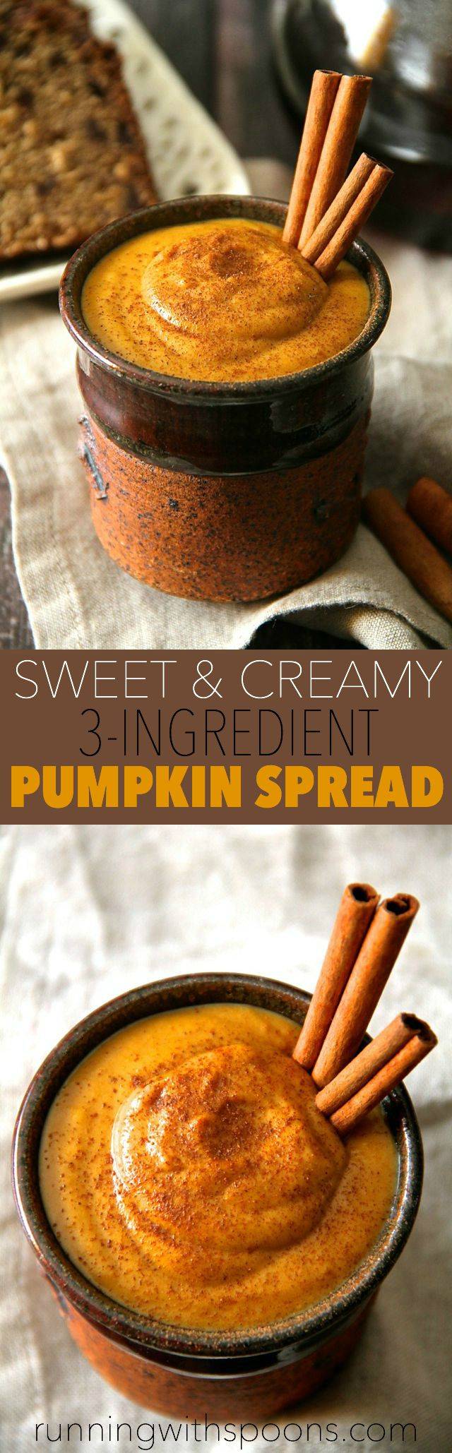 Sweet and Creamy Pumpkin Spread -- made with 3 ingredients and in under 2 minutes, this pumpkin spread is the perfect way to add a touch of fall flavour to your favourite meals and snacks! Vegan, gluten-free, and Paleo friendly || runningwithspoons.com #pumpkin #fall #vegan