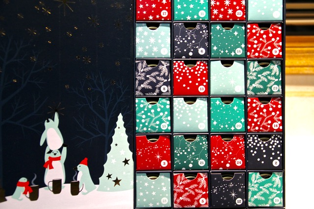 Davids Tea Advent Calendar