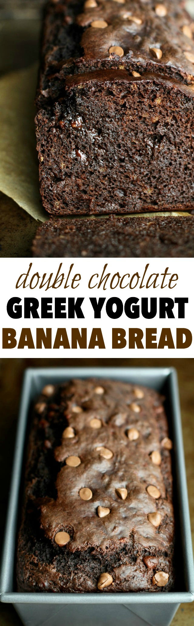 This Double Chocolate Greek Yogurt Banana Bread is LOADED with chocolate flavour, and so soft and tender that you'd never be able to tell it's made with NO butter or oil! || runningwithspoons.com #chocolate #healthy