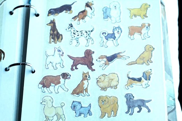 Sticker Collection3
