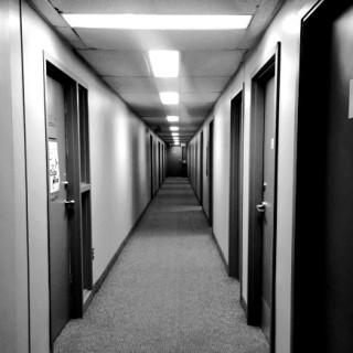eyeballs, ominous hallways, and cookbook Q&A (ToL#178)