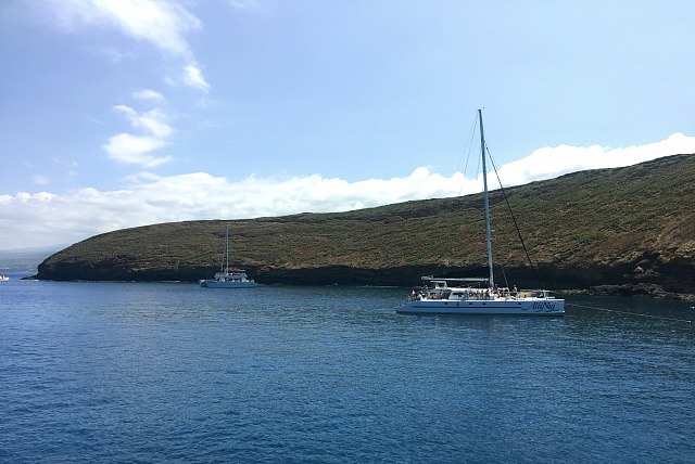 Snorkelling in Molokini Crater