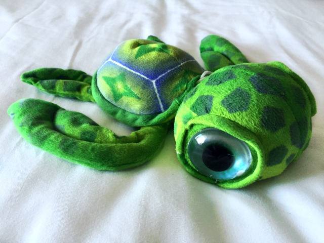 Squirt the Turtle