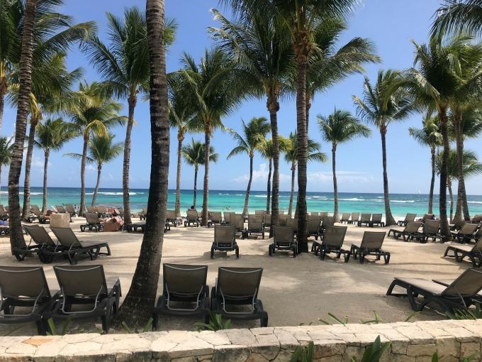 Palm Trees on the Beach2
